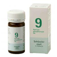 Nr. 9 Natrium phosphoricum D6 Schüsslerzout Pflüger